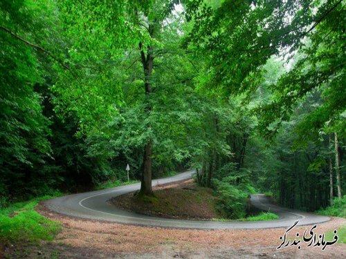 مناطق جنگلی بندرگز