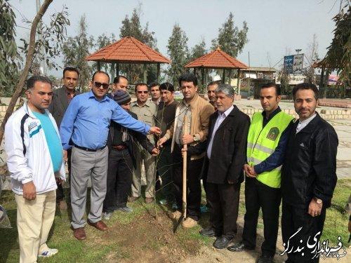 فرماندار بندرگز بر ترویج فرهنگ درختکاری و حفظ منابع طبیعی در جامعه تاکید کرد