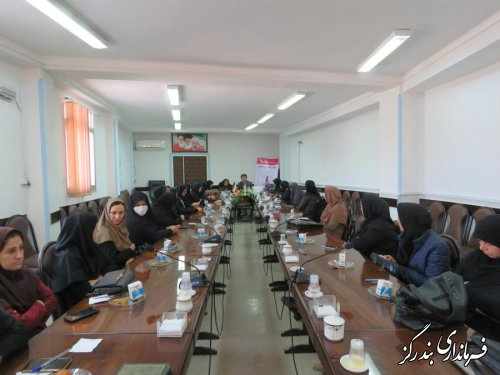 جمهوری اسلامی شرایط مطلوبی برای حضور زنان در حوزه های مختلف فراهم کرده است