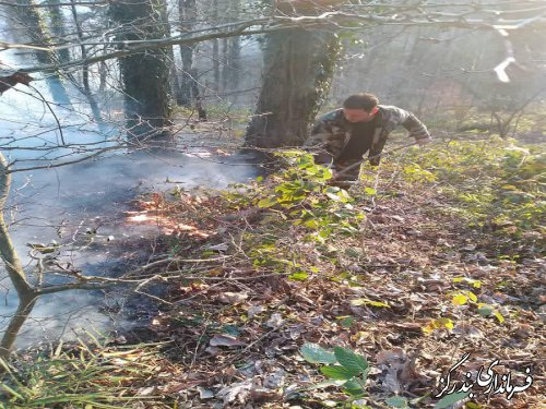آتش سوزی در ارتفاعات جنگل نوکنده مهار شد